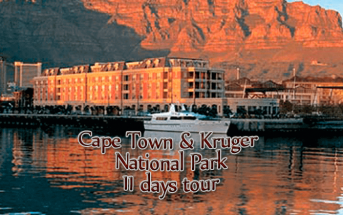 capetown new 343x215 - Cape Town & Kruger National Park - 11 Days from $3,120 per person twin share* land only