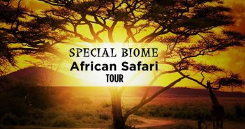 travel deals special biome banner 351x185 - Special Biome of Namibia & Botswana –14 Days From $5120 per person twin share* land only.