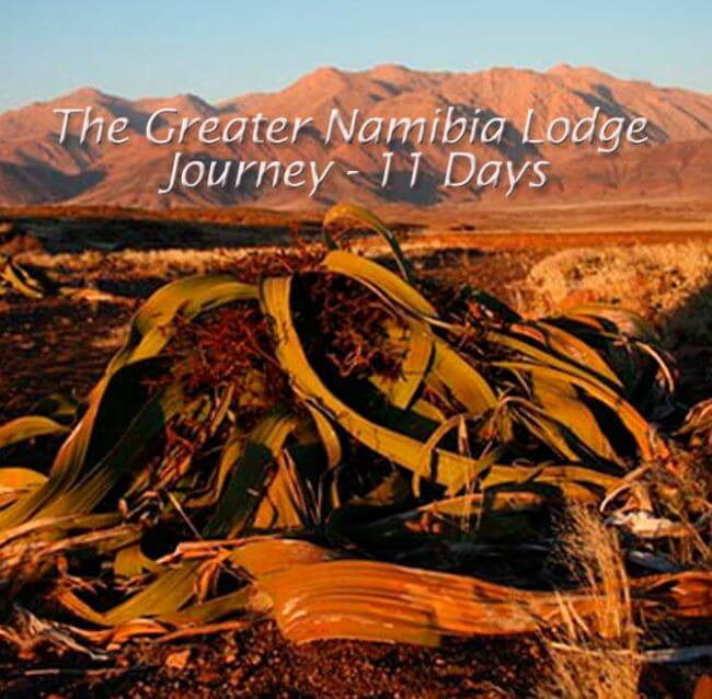 Nambia 2 - The Greater Namibia Lodge Journey - 11 Days