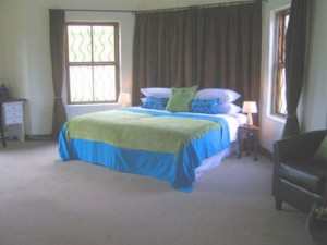 Amanzi 300x225 - Accessible South African Guest House-A Tasteful Touch of Africa