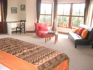 Enkosi room 300x225 - Accessible South African Guest House-A Tasteful Touch of Africa