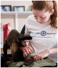 monkey helpers - Tails of Success: Life with a Helping Hands Monkey Helper