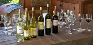 Wine 1 300x144 - Wine
