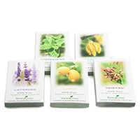sample packets - Mom of Four Created a Chemical Free Home and Business She Could Believe In