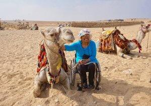 Camels 300x210 - Camels