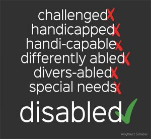 Pasted File at December 28 2017 1200 AM 300x276 - I am a Disabled Person, Not a Person with a Disability