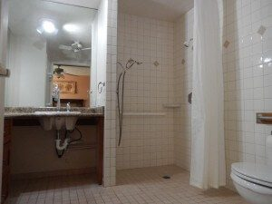 Large roll in shower in the master bathroom 300x225 - List Your Accessible Property