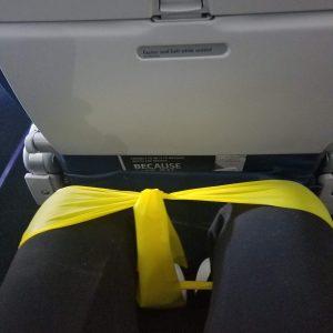 """20180705 122230 300x300 - Wheelchair Air Travel – """"Quad"""" Style"""