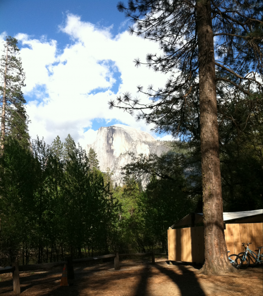 6A051D40 81EA 46B6 AD20 F38D86449408 e1552277701774 532x600 - Visit YOSEMITE from a Wheelchair - Returning to an Old Love with a New Perspective and Gratitude