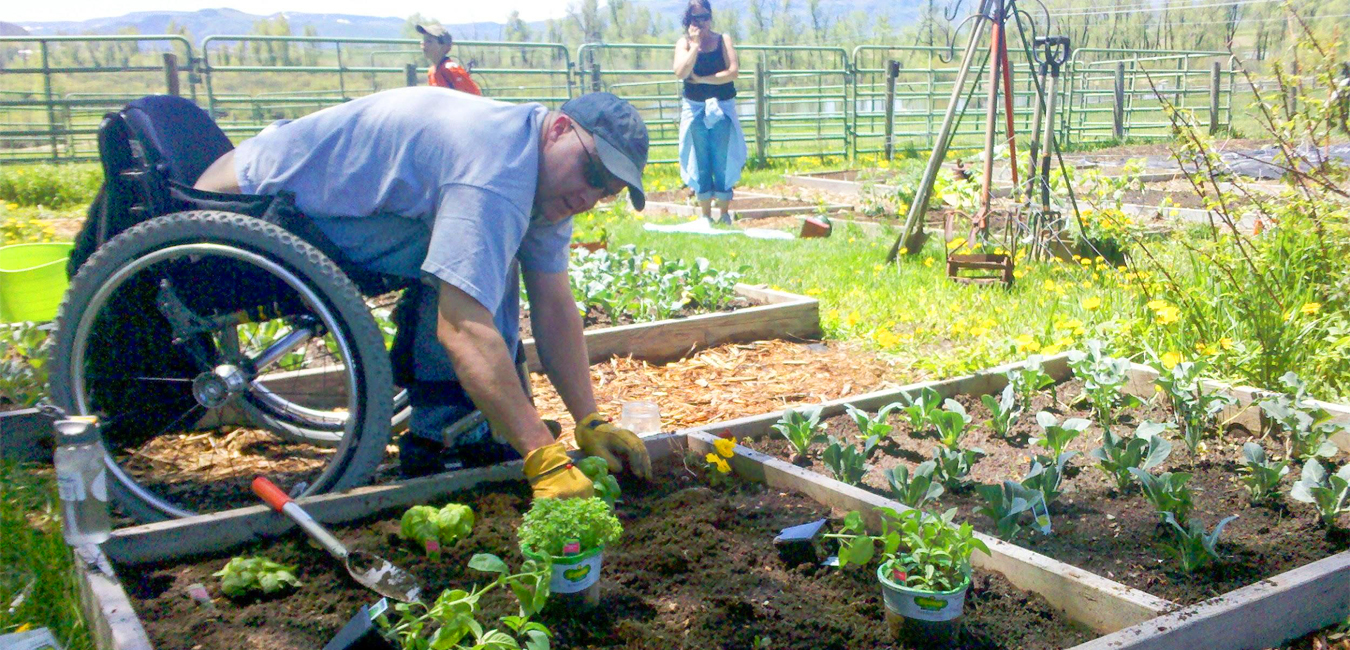 A man in wheelchair making his own garden bed - Wheelchair Accessible Farming and Gardening