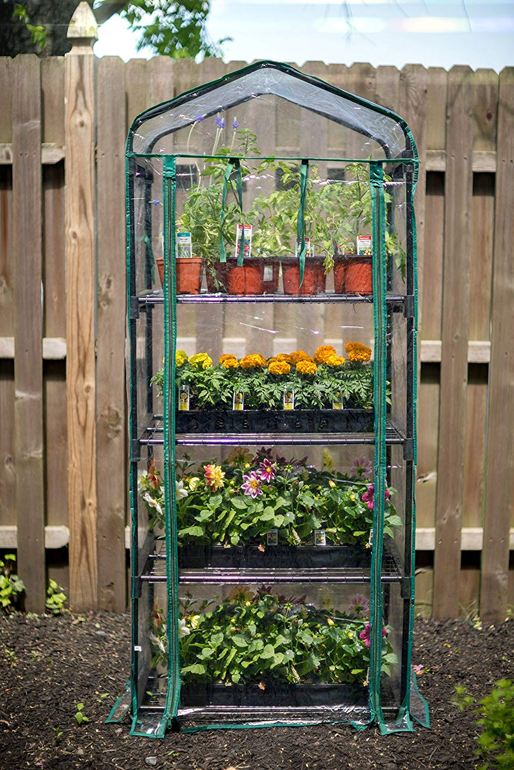 Gardman R687 4 Tier Mini Greenhouse - Wheelchair Accessible Farming and Gardening