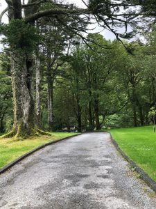 Ireland Day 12 19 225x300 - PUSHLiving Ireland 2019: Day 11-14 Galway, Kylemore Abbey, and Cliffs of Moher